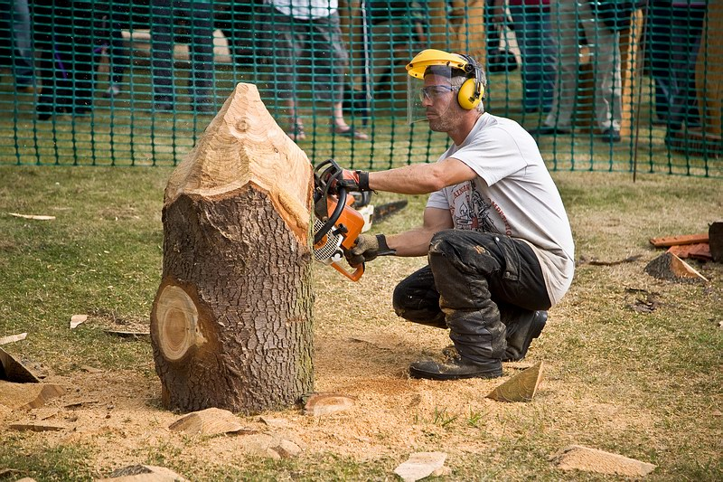 Chainsaw carving can you tell what it is yet talk